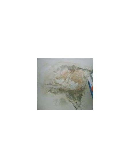 Comprar pintura para tapar manchas difíciles en la pared  ANGAR